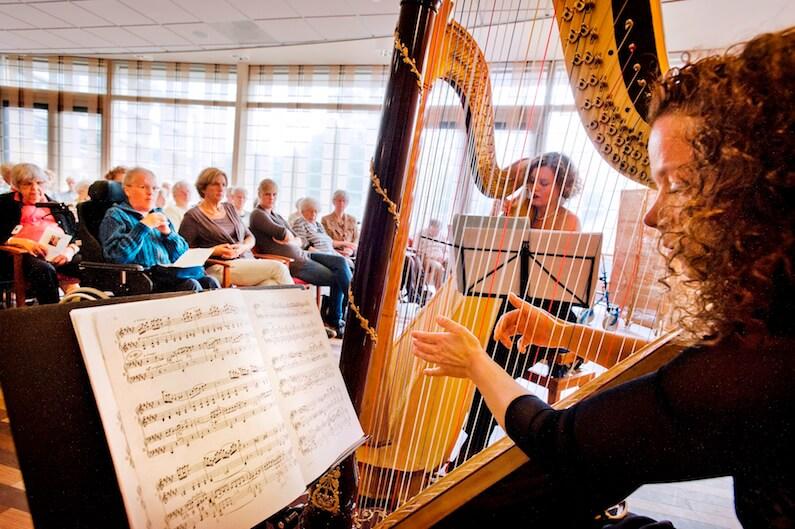 Vrouw die harp speelt